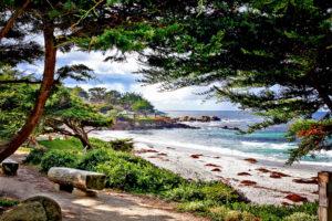 Carmel Beach by Caren Libby